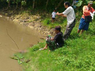 Mayat Bayi Mengapung di Anak Sungai Bengawan Solo di Klaten