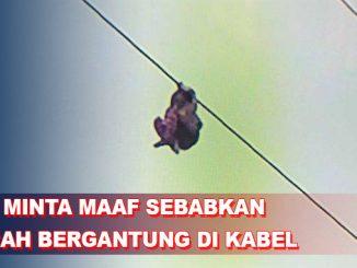 PLN Minta Maaf Bocah Terjebak Setinggi 15 Meter Bergantung di Kabel SUTET